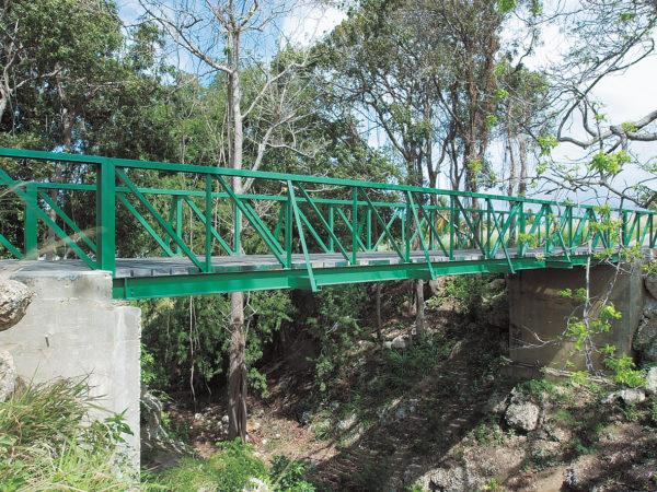 Bridge in Sandy Lane